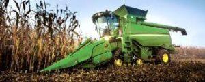 Chinas  Mangel treibt auch Maispreise durch die Decke