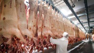 Vertrag unterzeichnet: Tönnies baut Schlachthof in China