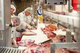 EU exportierte 2020 um knapp 20% mehr Schweinefleisch