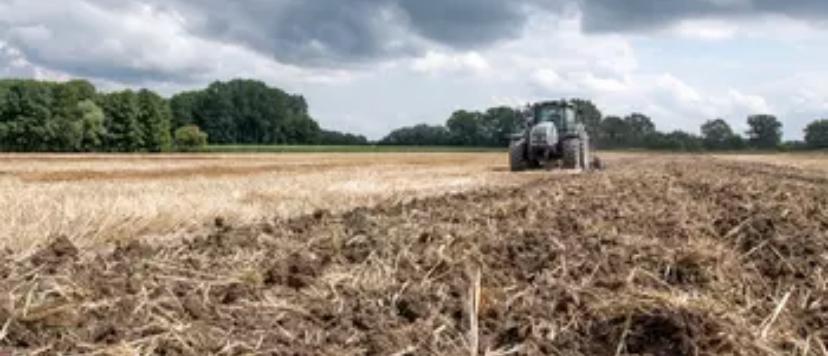 Bodenpreise: Das kostet der Hektar Ackerland die Bauern in Europa
