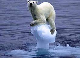 Read more about the article Das erste Klima-Kippelement könnte fallen