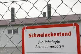 Read more about the article Österreich: Schweinehalter schockiert über Stalleinbrüche